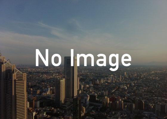 オーダーメイド着ぐるみ制作の画像